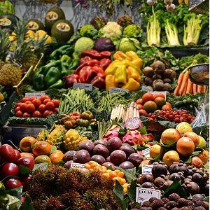 Food & Produce